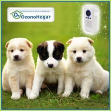 Ozonizadores para eliminar malos olores en el hogar